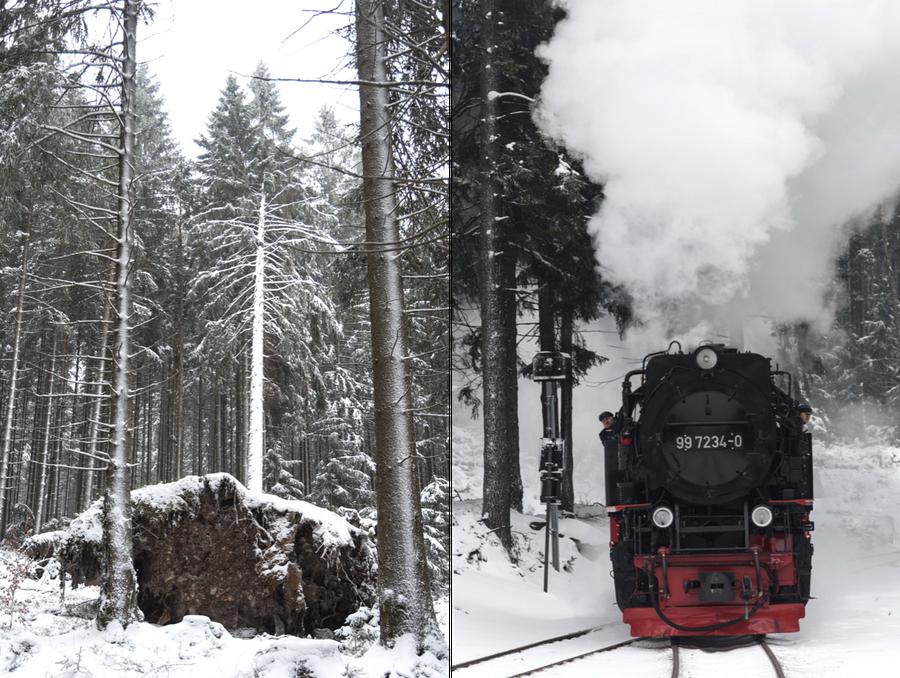 Brockenbahn Harz im Schnee