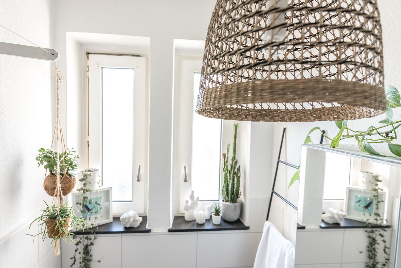 Pflanzen fürs Badezimmer