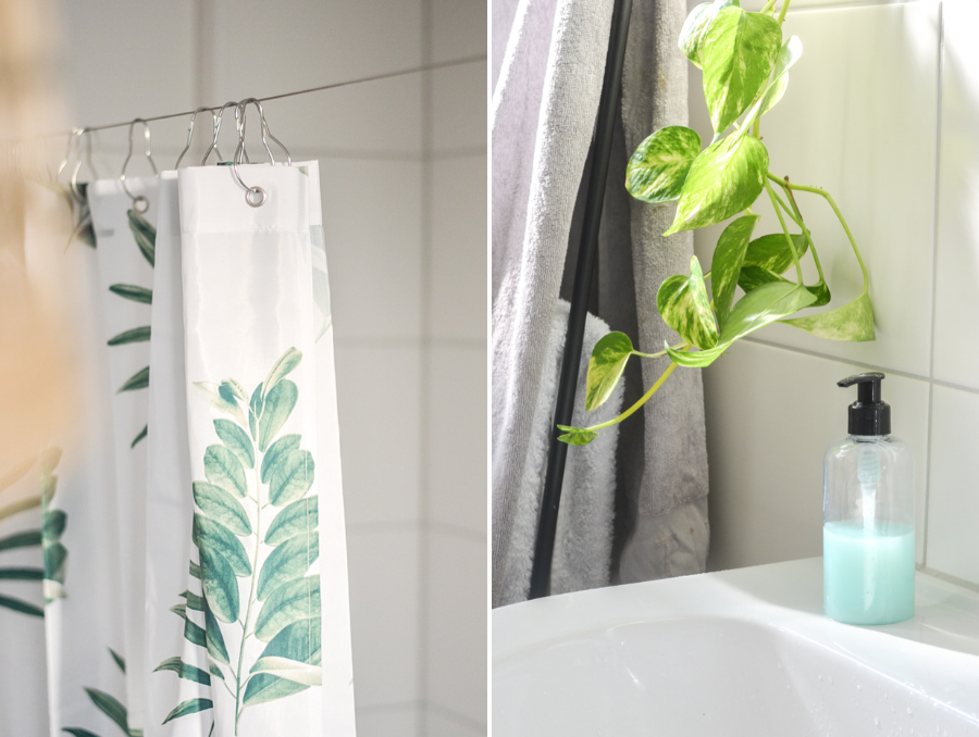 ruhrwohl.de - Die besten Pflanzen fürs Badezimmer: Worauf man achten ...