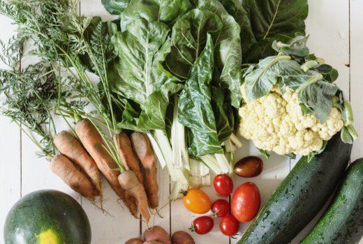 Gemüsegarten in Bochum mieten - Meine Erfahrungen