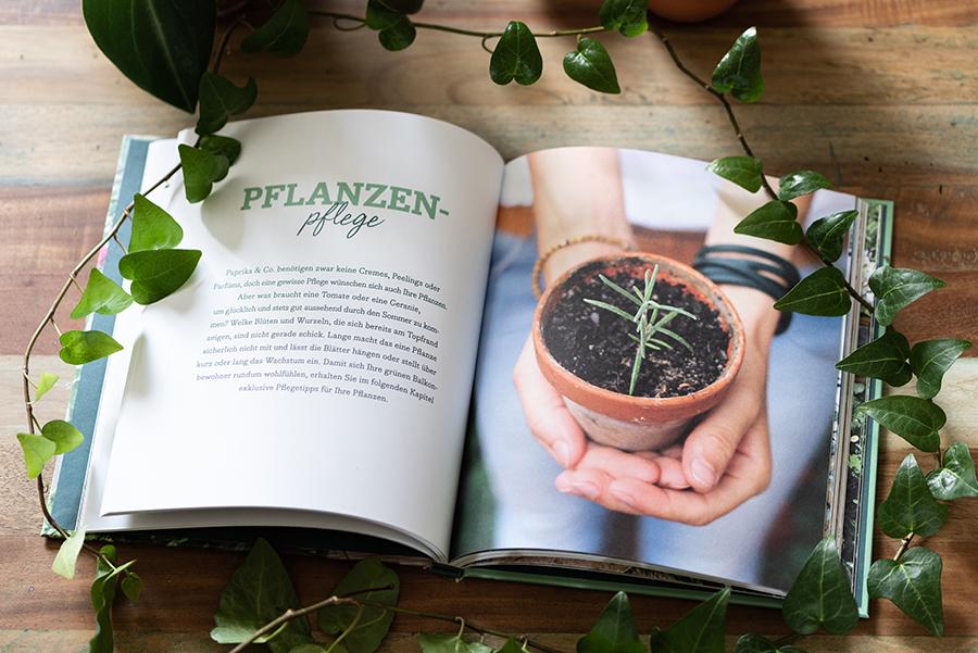 Buchvorstellung: Mein kreativer Stadtbalkon, Tipp für alle mit kleinen Gärten, Balkon, Urban Gardening, Gärtnern in der Stadt