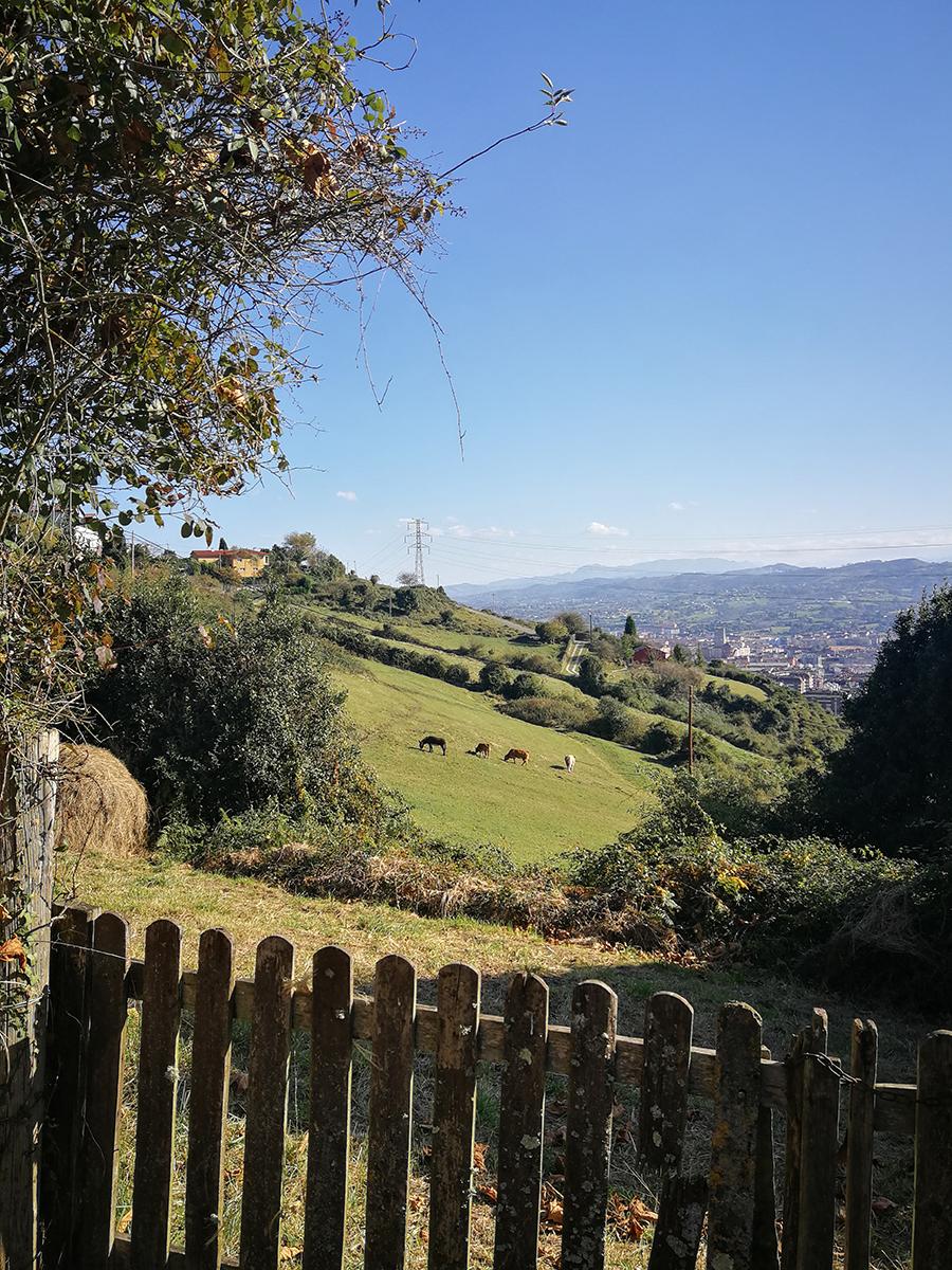 Oviedo an der Nordküste Spaniens